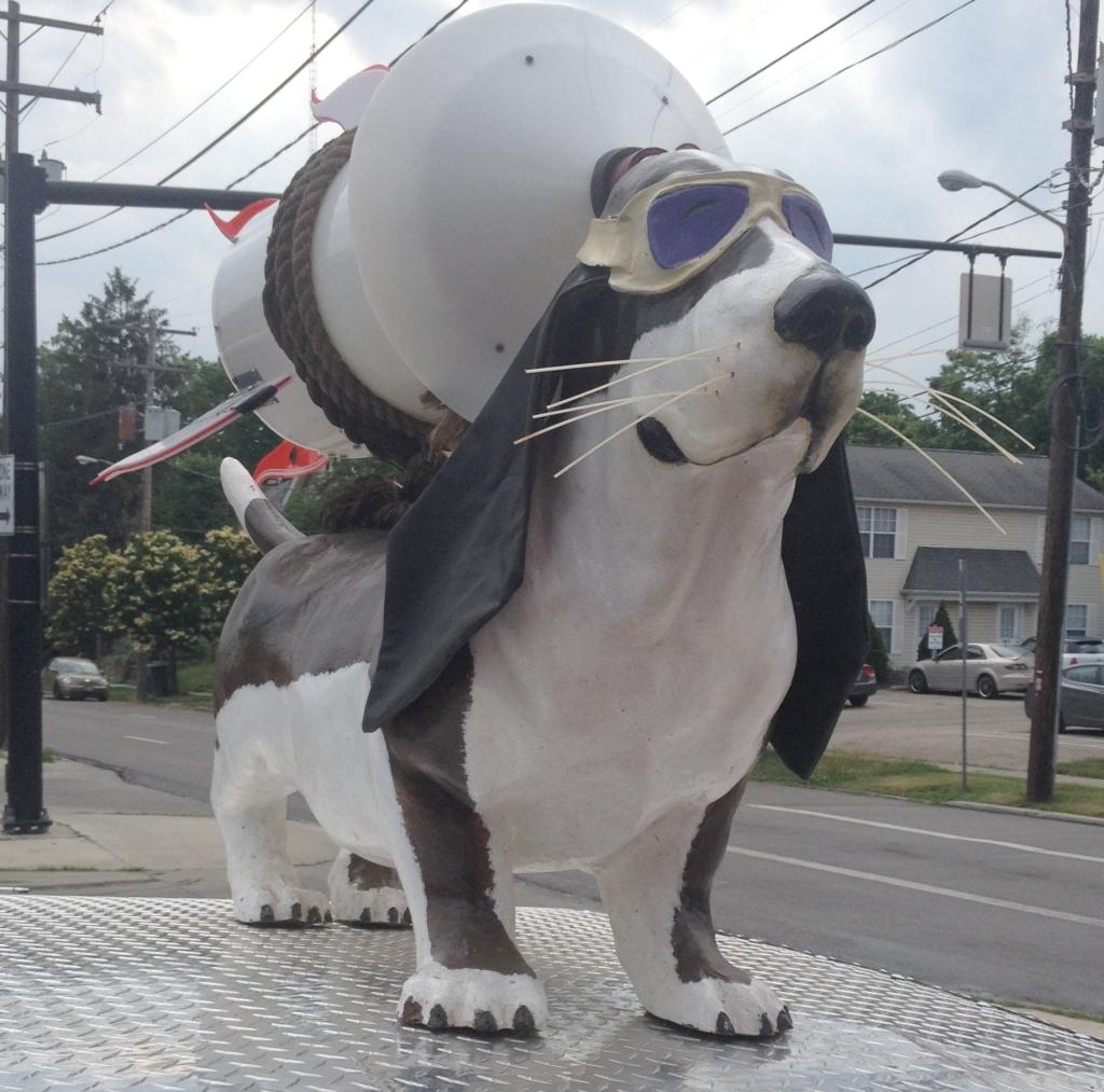 hounddogs
