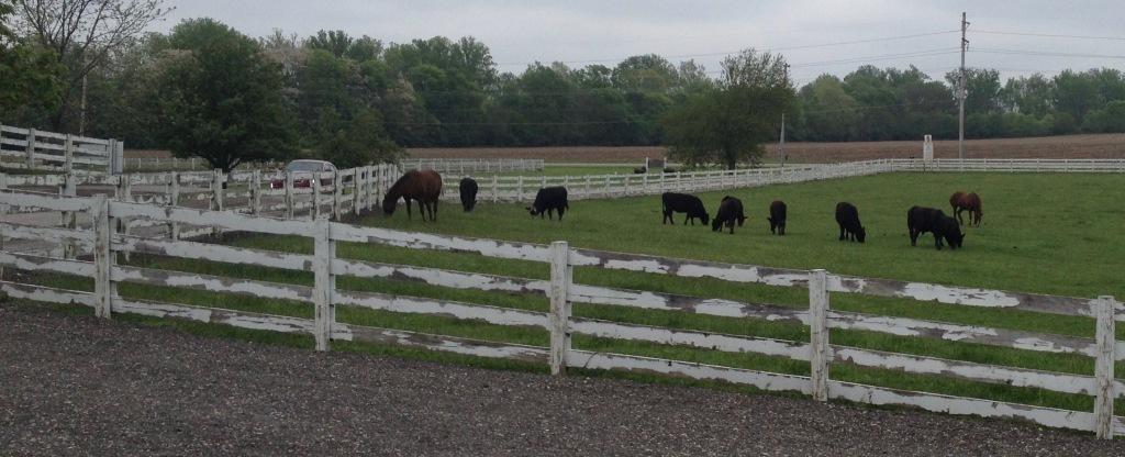 Blystone Farm